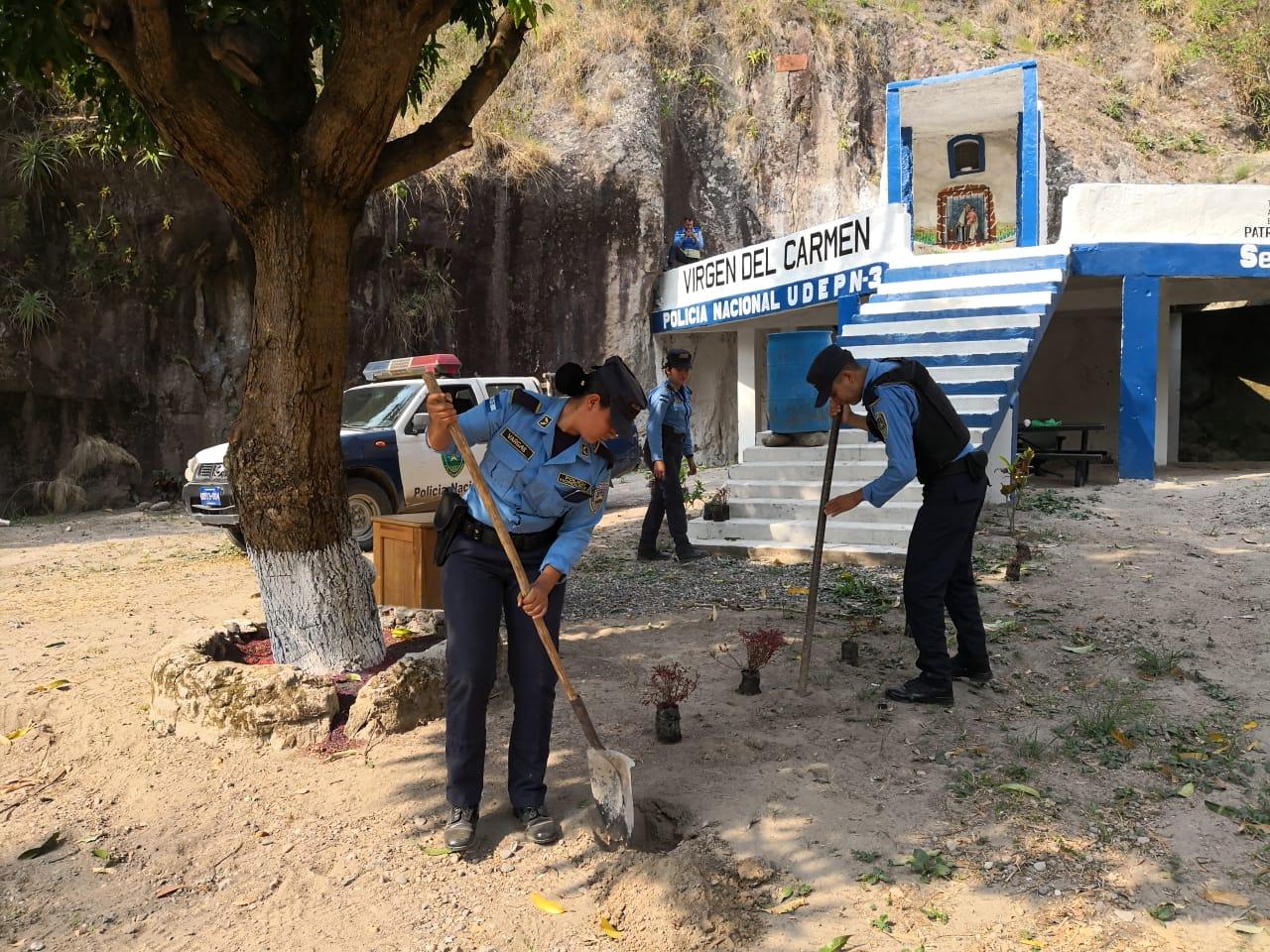 Agentes policiales reforestan sector del altar de la Virgen del Carmen en la CA-5