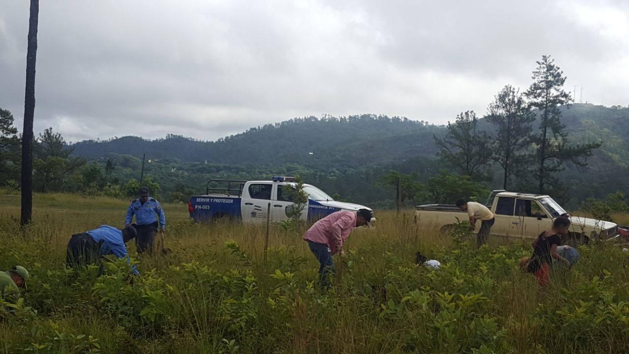 Policía Nacional realizó campaña de ornato, fumigación en asilo de ancianos  «Villa del Cerro» en Siguatepeque