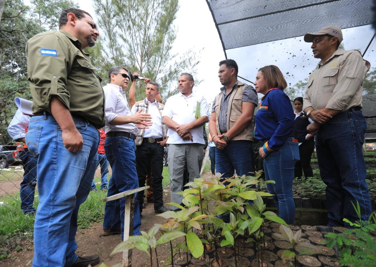 Presidente Hernández visita vivero y conoce experiencia de beneficiarios en Gualaco, Olancho