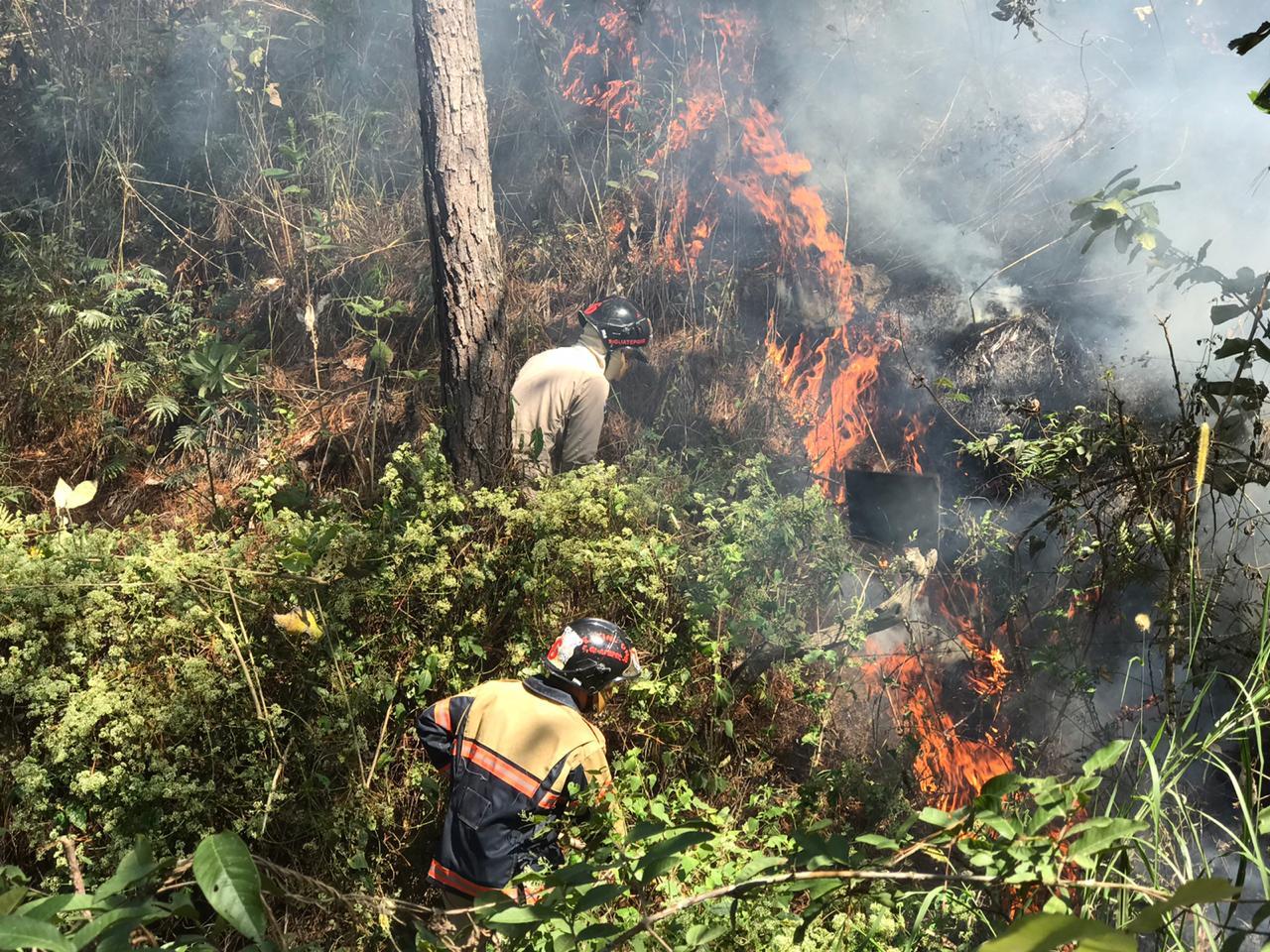 Bomberos de Siguatepeque atienden incendio en zacatera