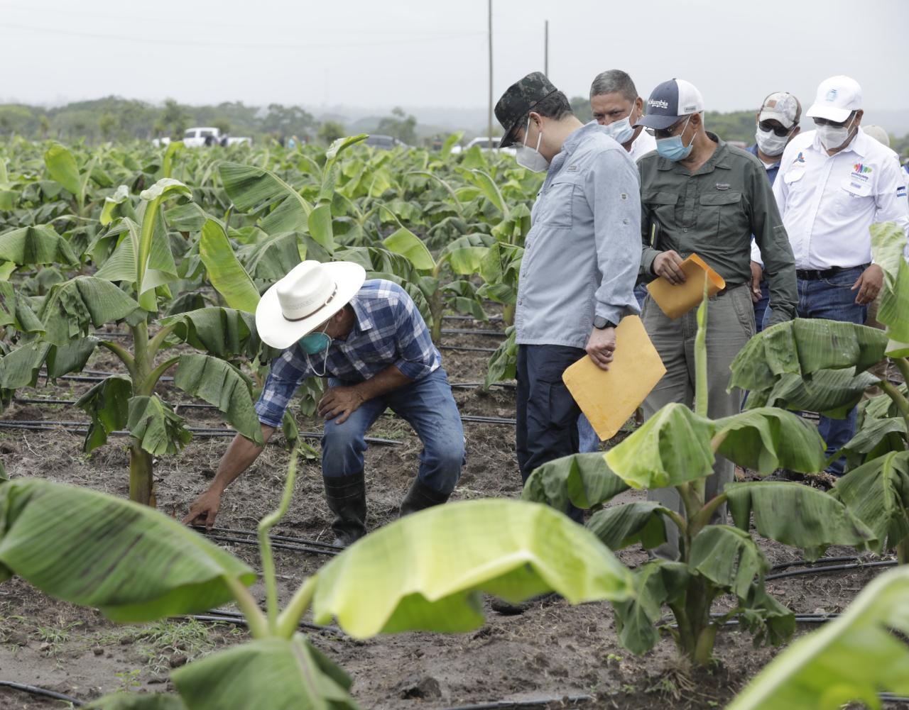 Productores de Cane, La Paz conocieron las ventajas del Agrocrédito 8.7 %