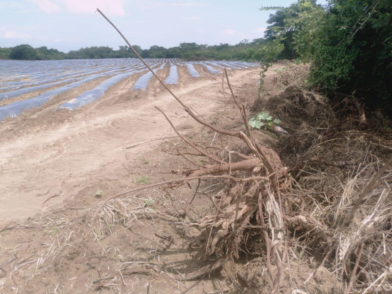 Fiscalía del Medio Ambiente de Comayagua investiga descombros en La Villa de San Antonio y Lamaní