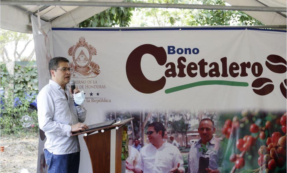 Bono Cafetalero invierte 300 millones de lempiras para beneficiar a 91.400 productores de 15 departamentos
