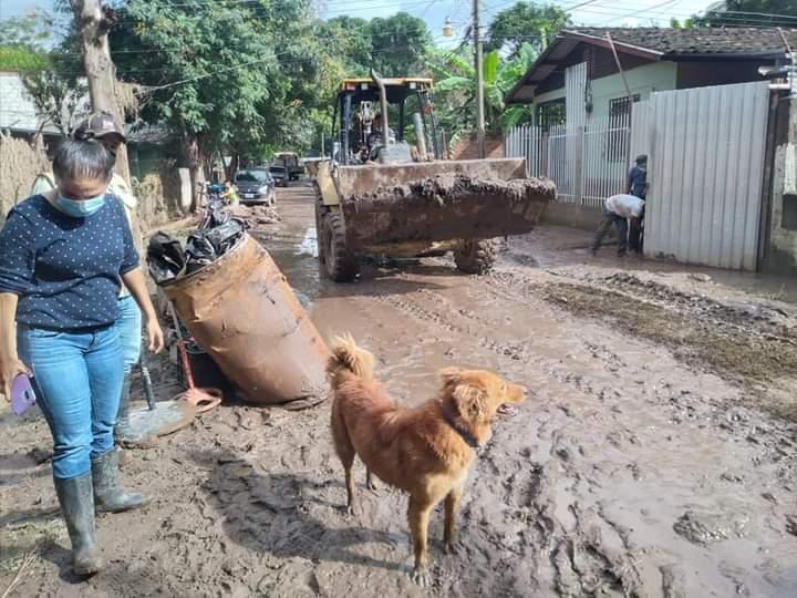 Alcaldía de Comayagua y CODEM realiza limpieza en las colonias que fueron afectadas por el huracán ETA