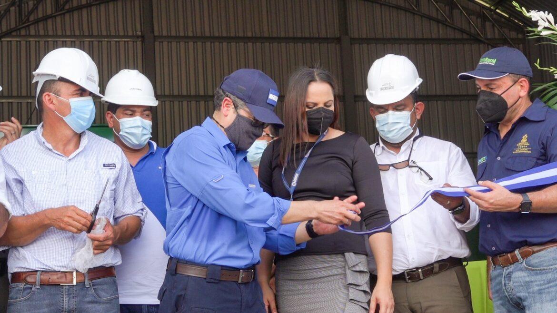 Gobierno garantiza seguridad alimentaria: Después de décadas de perderlo todo, agricultores del Corredor Seco producen exitosamente todo el año